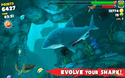 Hungry-Shark-Evolution2